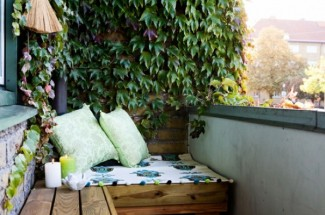 do you need small garden ideas