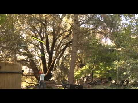 Manual Pole Saw Pruning Techniques