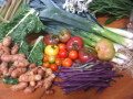 The Benefits Of Homegrown Food